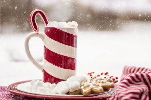 Cup of hot cocoa with a plate of cookies